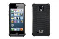 Cat_Case_291