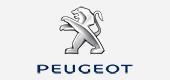 Peugeot-POI-Blitzer