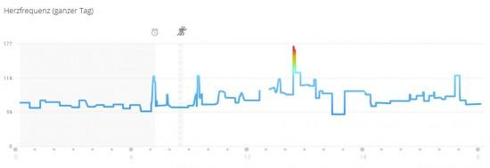 Auswertung der Herzfrequenz des Tages in Garmin Connect