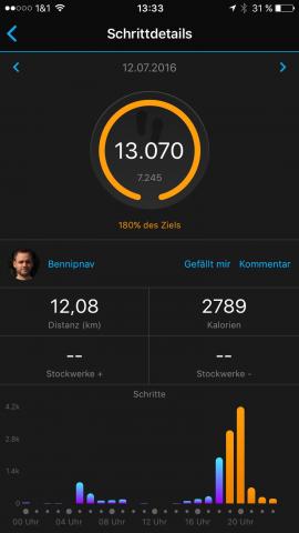 Garmin-vivomove-Connect-Schritte-01