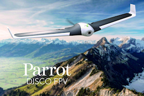 Parrot-disco-teaser